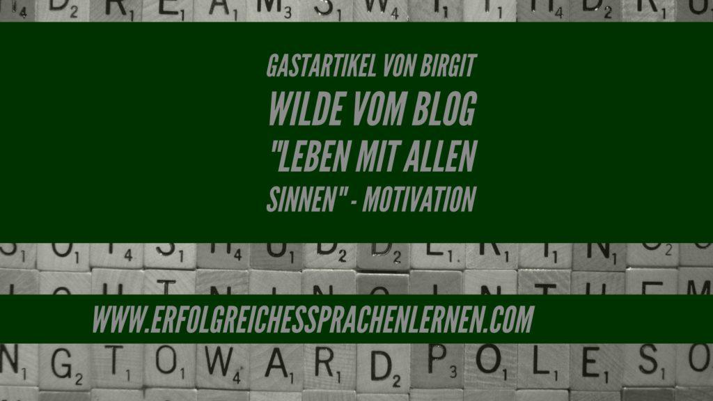 birgit-wilde